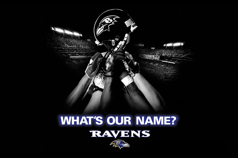 Raven Football Wallpaper 2013 Baltimore Ravens Football